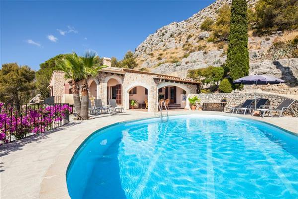 Ajuga Fonto in Illes Balears