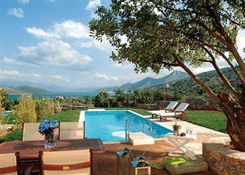 Almond Tree in Crete