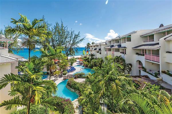 Apartment Bougainvillea A2 in Barbados