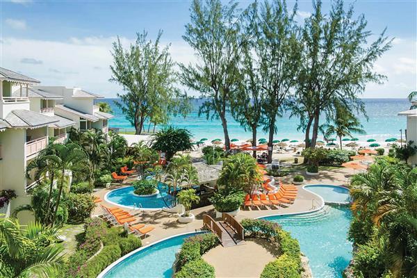 Apartment Bougainvillea Junior Suite in Barbados