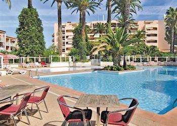 Appartement des Palmiers 1 in Alpes-Maritimes