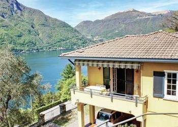 Azalea in Provincia di Como