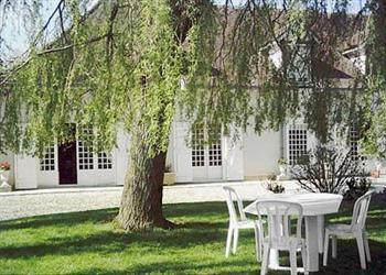 Buisson Renard in Champagne-Ardenne