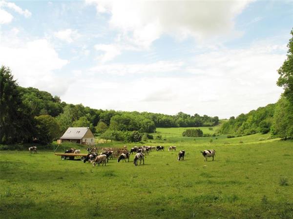 Gite Ferme des Aubes Terres in Aisne