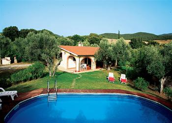 I Cipressi in Italy
