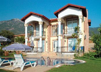 Pegasus in Turkey