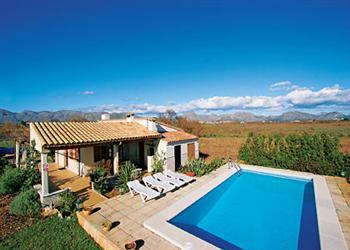 Picarol Gran in Mallorca