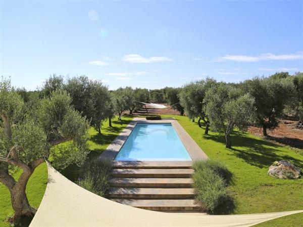 Trulli Di Olive in Provincia di Brindisi