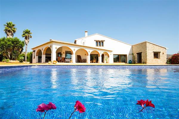 Villa Alana in Alicante