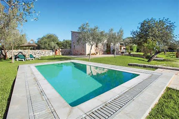 Villa Aljub de son Amer in Mallorca