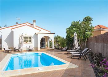 Villa Flores in Fuerteventura