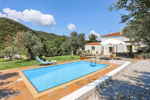 Villa Olivia in Skopelos