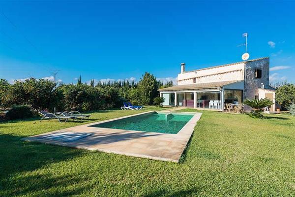 Villa Son Morey II in Mallorca