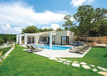 White Oak Tree Villa in Crete